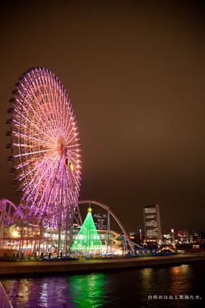 20111202-_MG_0348.jpg