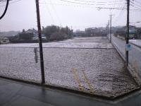 引っ越した先での初雪