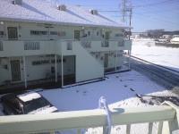 雪化粧2011