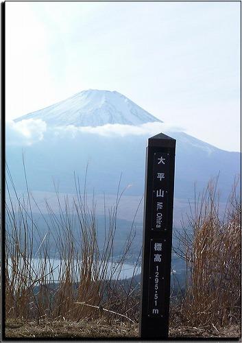 2011122818.jpg