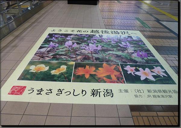 2012032309.jpg