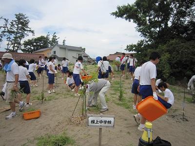 学校林で除草作業 1