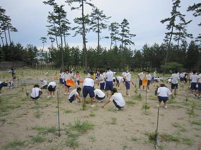 学校林除草 2
