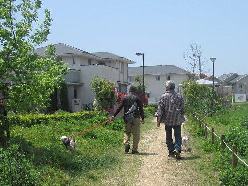 2011・05・08浜1