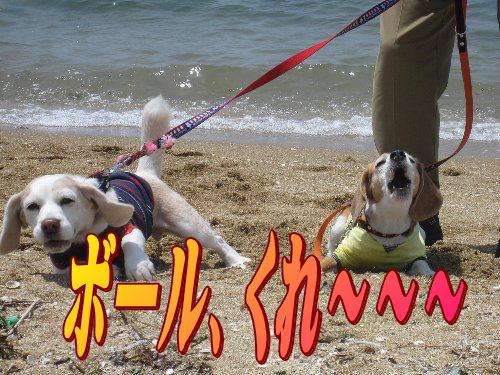 2011・05・08浜5