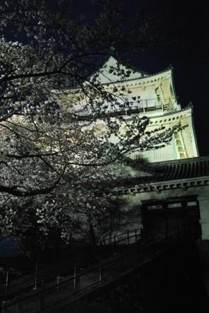 伊豆 小田原城