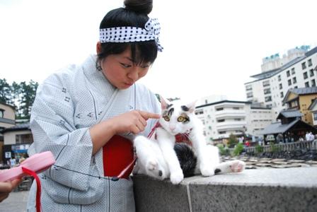 yubatake-kanbanmusume