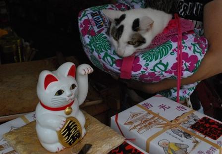 maneki-cat