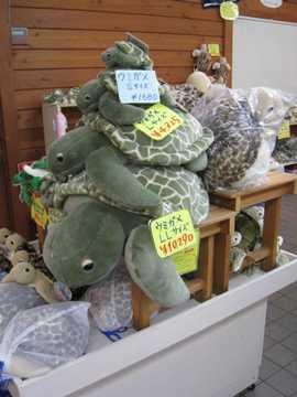 海亀ぬいぐるみ