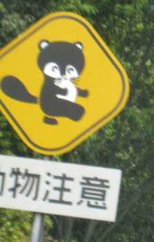 たぬき標識