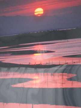 夕陽 写真