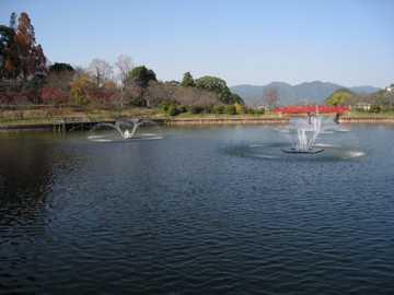 甘木公園3