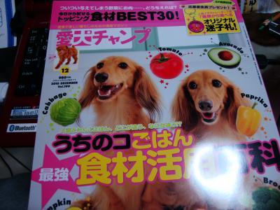 縺励s_convert_20101030202200