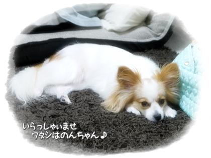 001-20120716.jpg
