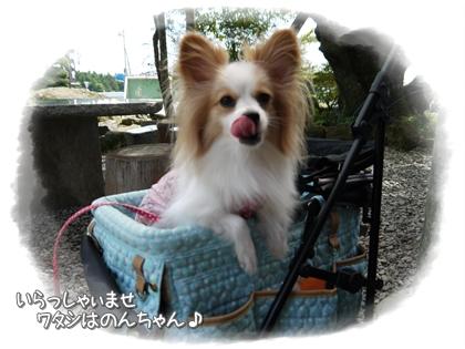 001-20120915.jpg