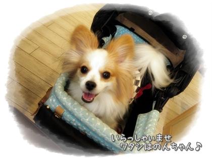 001-20121124.jpg