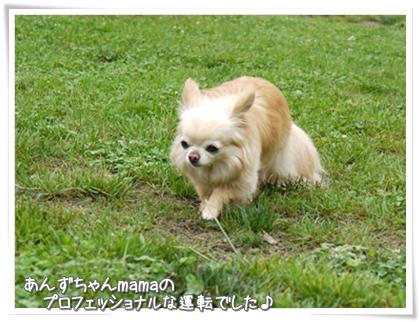 002-01-20120716.jpg