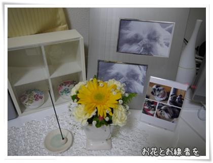002-20111114.jpg