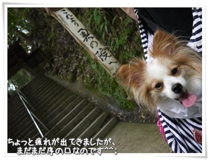 020-20120802.jpg