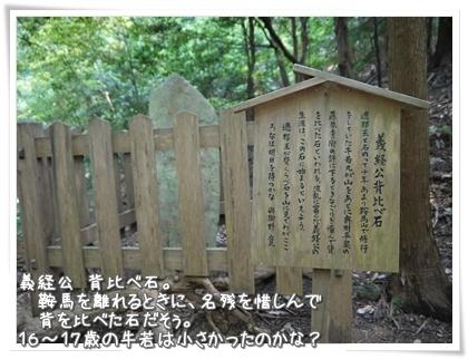 025-20120802.jpg