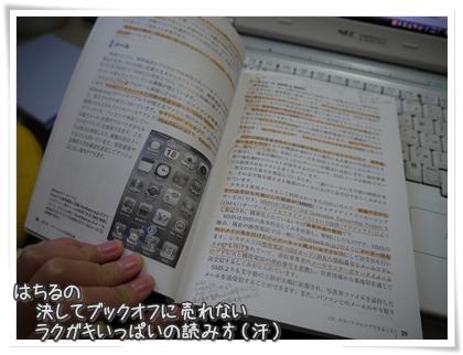 20111104-012.jpg