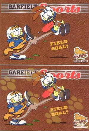 Garfield 2004 Pacific
