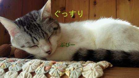 001_convert_20110228133609.jpg