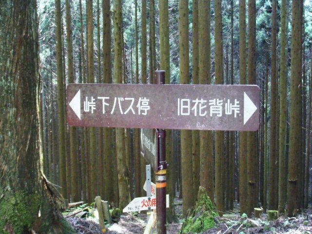 貴船神社12