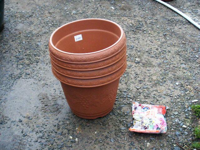 鉢をホームセンターにて買いました。