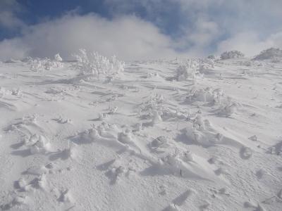 初心者に優しい雪