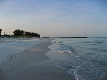 AMI beach