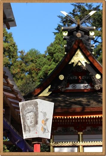 2011 八幡宮 菊祭り 019