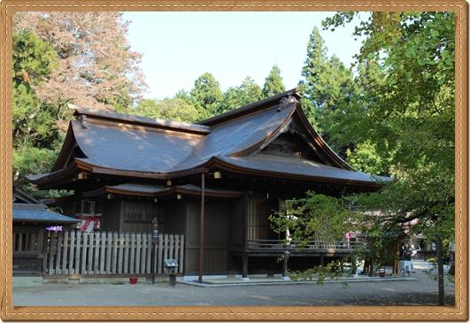 2011 八幡宮 菊祭り 023