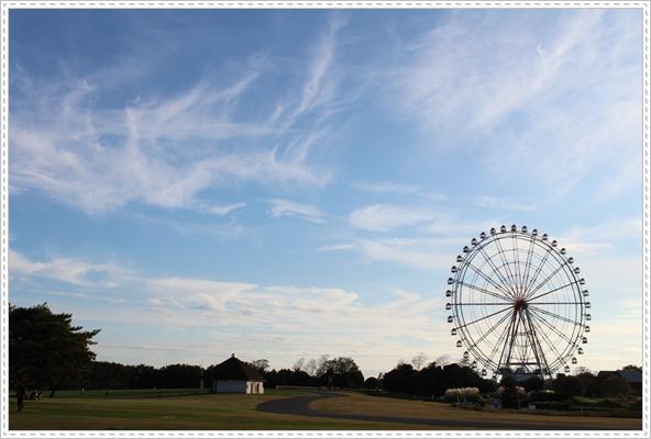 2011 ひめちゃんの日常 009