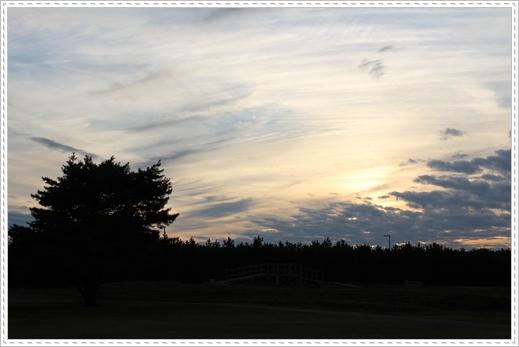 2011 ひめちゃんの日常 066