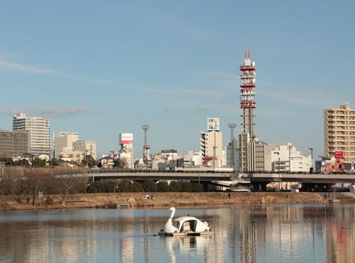2012 ひめちゃんの日常 001