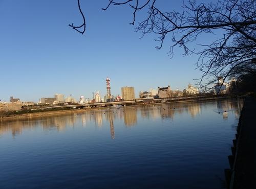 2012 ひめちゃんの日常 025