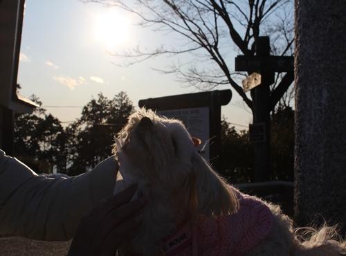 2012 イーアスつくば&筑波山 106