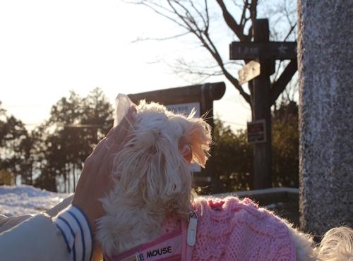 2012 イーアスつくば&筑波山 105