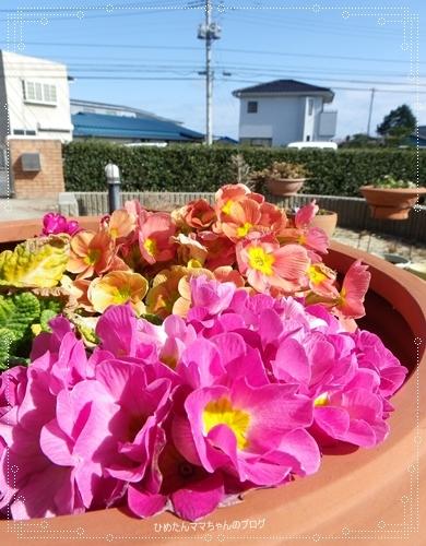 2012 堀川庭園 026