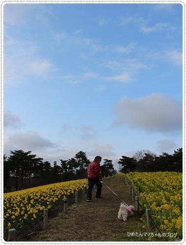 2012 ひめちゃんの日常 066