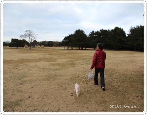 2012 ひめちゃんの日常 091