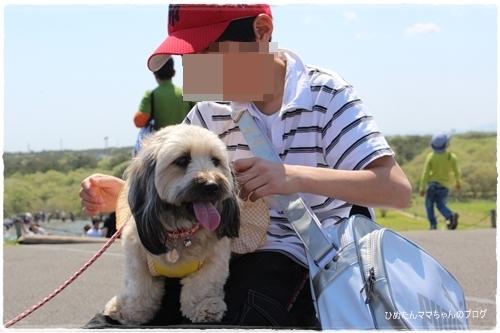 2012 ひめちゃんの日常 057