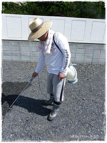 2012 ひめちゃんの日常 049