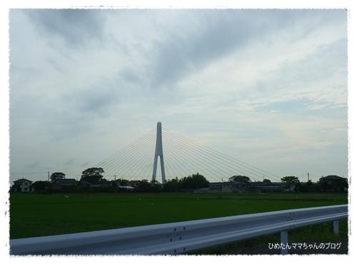 2012 ひめちゃんの日常 045