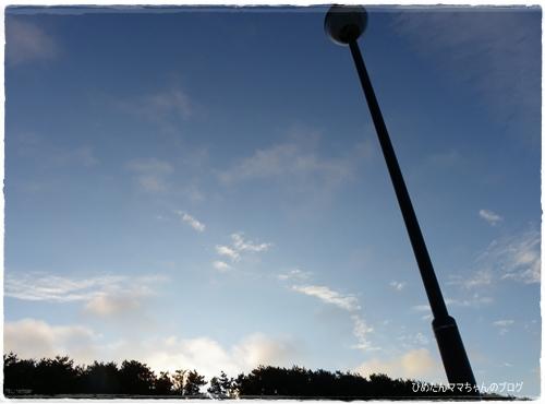 2012 ひめちゃんの日常 071