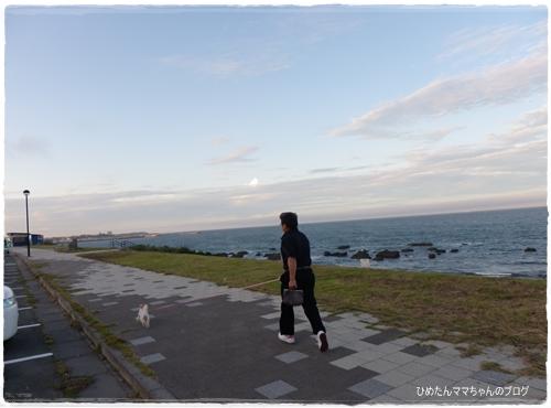 2012 ひめちゃんの日常 072