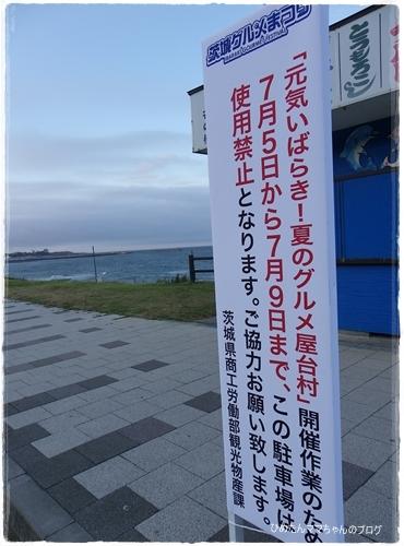 2012 ひめちゃんの日常 076
