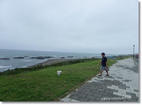 2012 大洗 屋台村 001