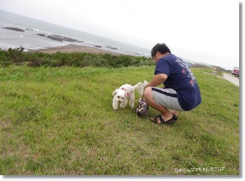 2012 大洗 屋台村 002